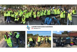 LME involved in the #WorldCleanUpDay